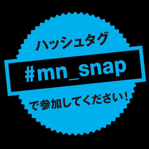 insta_snap_tag