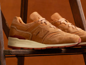 nb997-redwing-thum