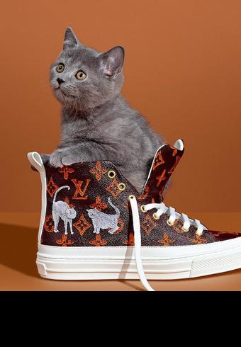 """猫 × ルイ・ヴィトン=""""キャットグラム""""が可愛い!_ホットトピックス"""