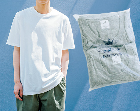 パックTシャツのコスパ最強なおすすめは?_メガスライダー